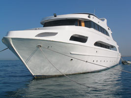 M/Y Oxford-Safare 5*