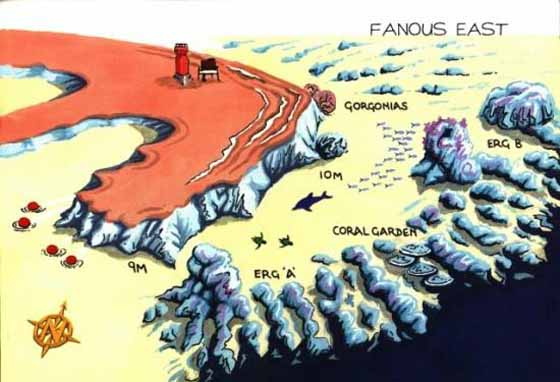 FANOUS - EAST